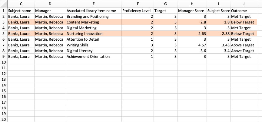 The Target Excel Report